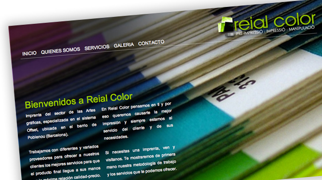 Reial Color - Diseño Web